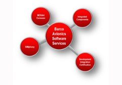 Avionics software services